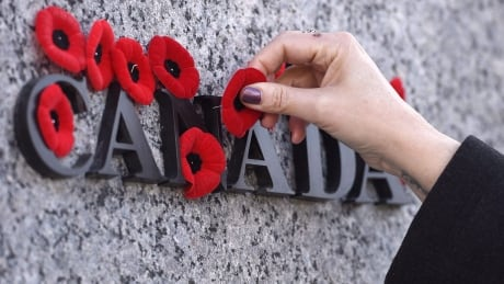 Remembrance Day Poll 20191108