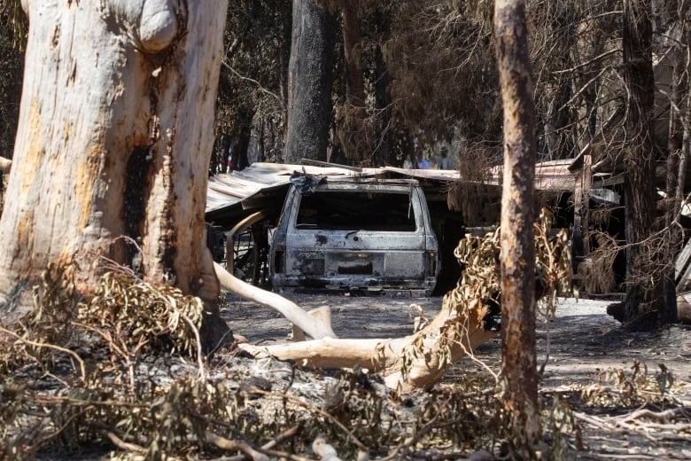 Bushfires continue to burn across Australia's east coast