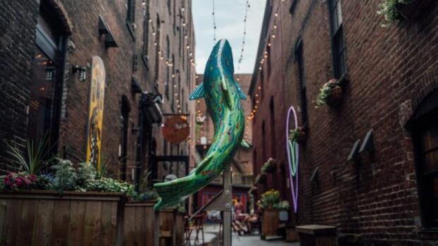 'Unique' Saint John alleyway gets a reality check - CBC.ca