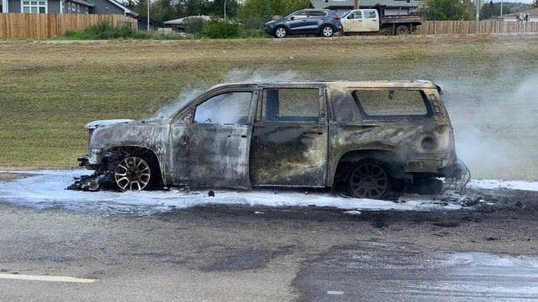 Lax regulations mean automakers can 'bury' reports of vehicle fires, says advocate