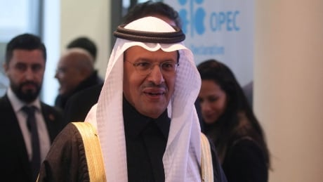 OPEC nations agree to further oil supply cut