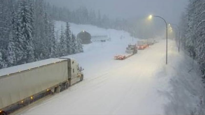 Trans Canada Highway closed in both directions east of Revelstoke after semi trucks crash