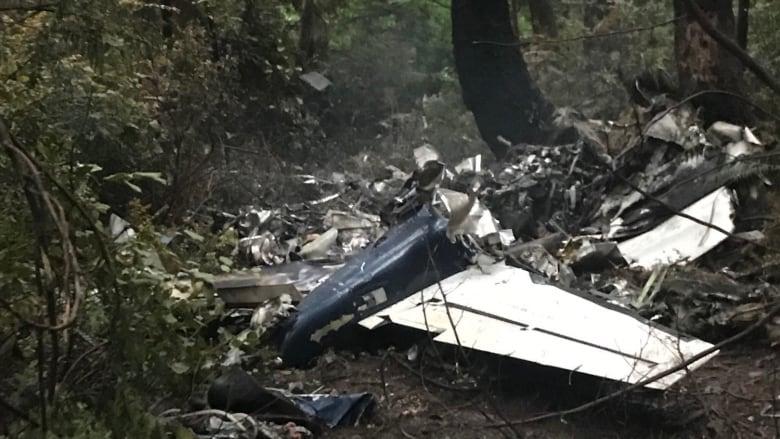 Pilot killed in B.C. plane crash ID'd as Alex Bahlsen