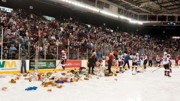 Teddy bear toss game postponed after goalie's horrific injury