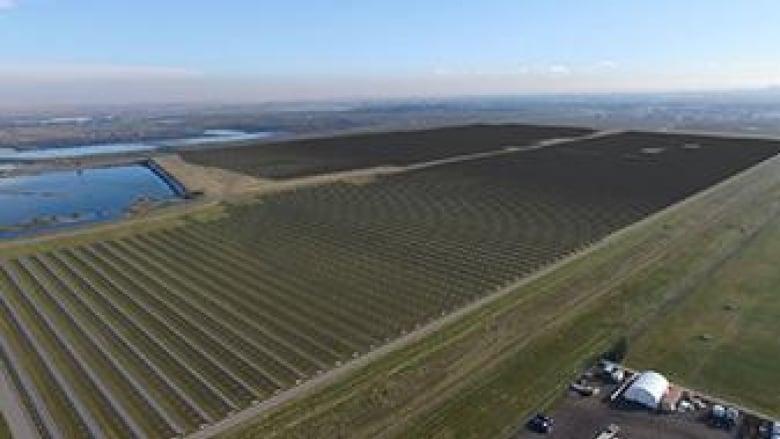 Irish company more than doubles plan for solar farms in Calgary