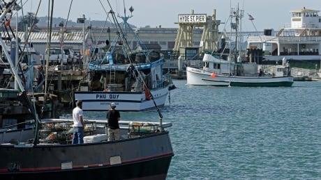 Fish in Fisherman's Wharf