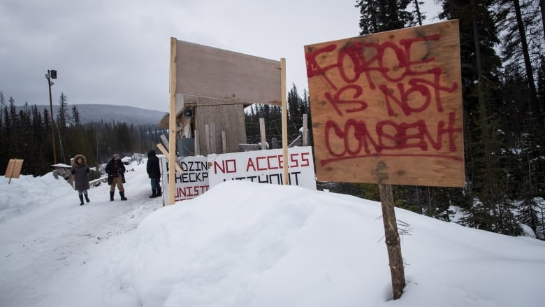 Work must stop on Trans Mountain, Site C, LNG pipeline until First Nations approval, UN committee says