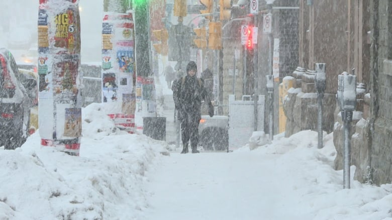 Snow starting, winds ramping up, as blizzard set to wallop Newfoundland
