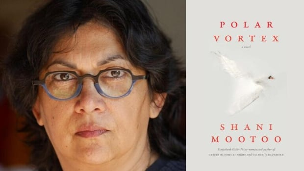 Shani Mootoo's novel Polar Vortex explores love, relationships and real connections in an age of social media | CBC Books