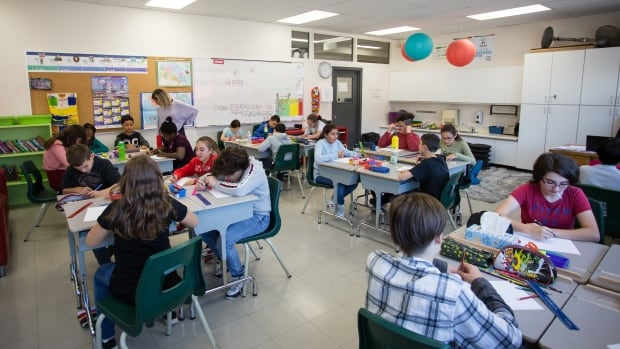Review of Sask. curriculum and high school grad requirements getting underway this week | CBC News