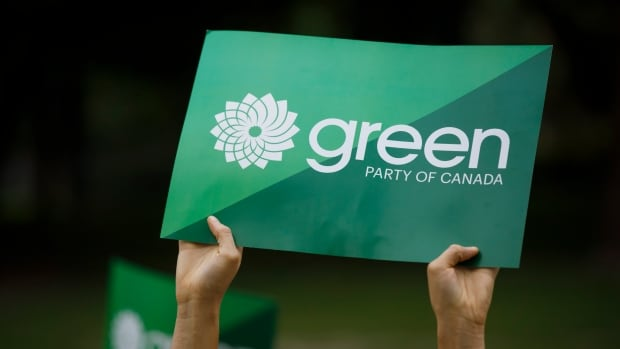 N.B. Green supporters vying for federal council seat amid party leadership turmoil
