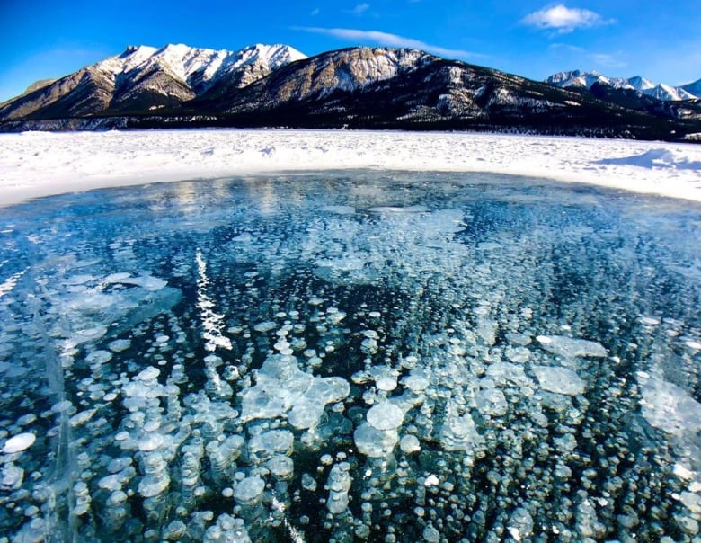 These stunning frozen methane bubbles were captured at Abraham Lake