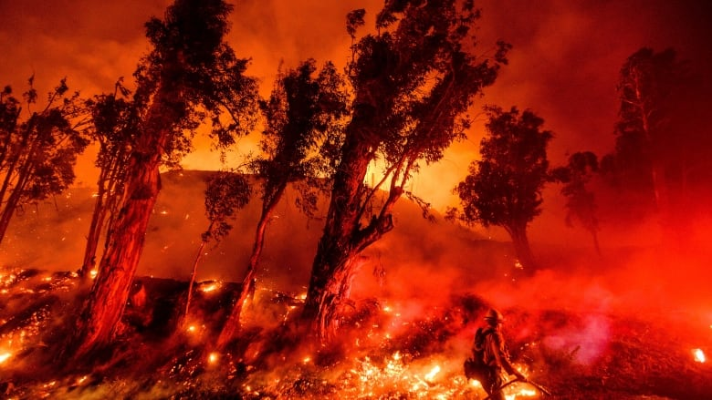 Earth just had its hottest decade on record