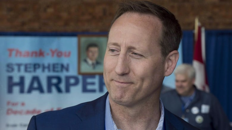 Peter MacKay says he will march in Toronto's Pride parade