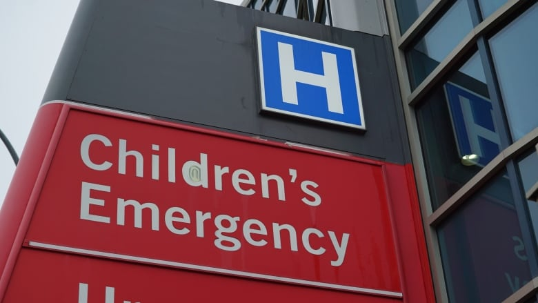 2 infants died after not receiving emergency air transport to Winnipeg Children's Hospital: report