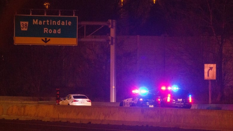Lexus driver led Niagara cops on wild chase, ran across QEW to escape: police