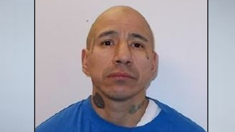Violent, high-risk sex offender expected to live in Winnipeg after release from prison: police