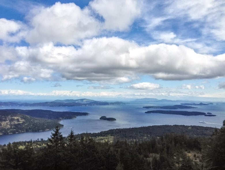 Forest Mapping Project Aims To Protect Gulf Islands