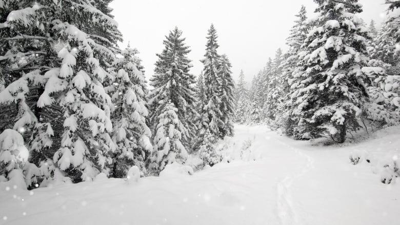 Snowboarder, skier die in separate incidents after being found unresponsive in Kootenays