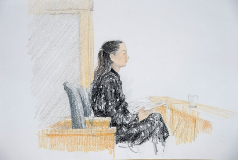Huawei CFO case back in BC court on Monday