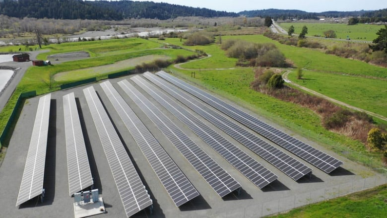 Microgrids: An idea whose time has come?