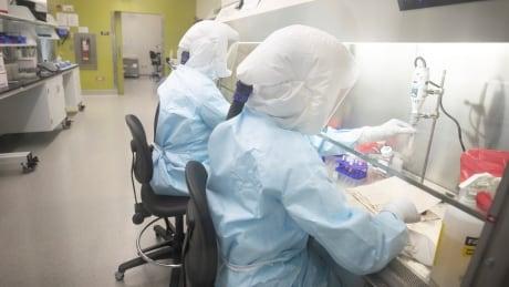 coronavirus saskatchewan virus testing vaccine file