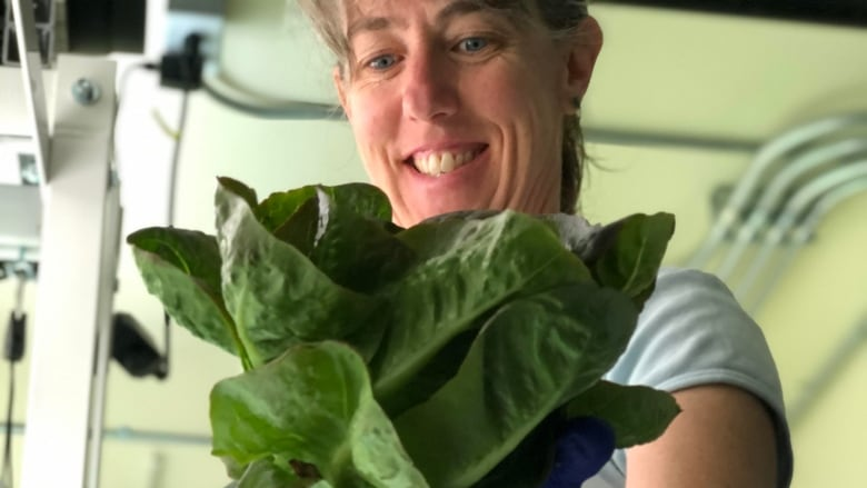 Despite expansion hiccups, Skagway brewery boasts freshest greens in town from indoor garden
