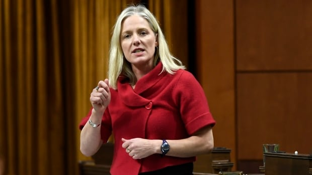 Police launch hate crime investigation after man yells obscenities at Catherine McKenna's office | CBC News