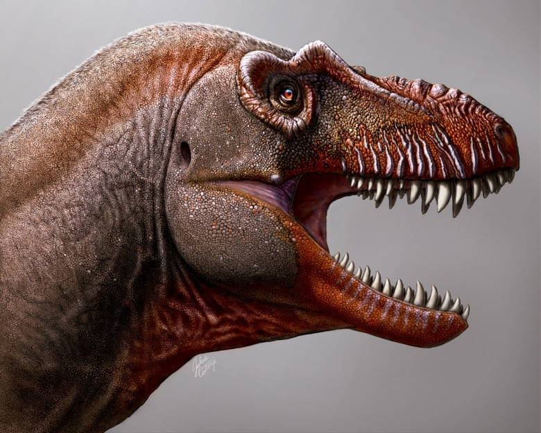 Farmer unearths new cousin of T. rex dubbed 'Reaper of Death'