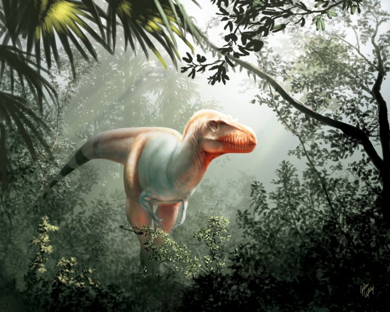 'Reaper of death': Student discovers new Tyrannosaurus rex relative