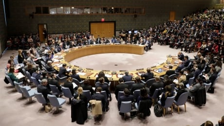 United Nations Palestinians
