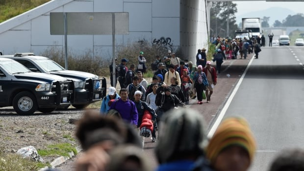 'Aggressive' U.S.-Mexico migration policies increasing violence against asylum seekers — MSF | CBC News