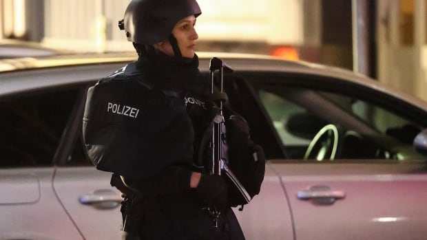 At least 8 people killed in shootings in Hanau, Germany | CBC News