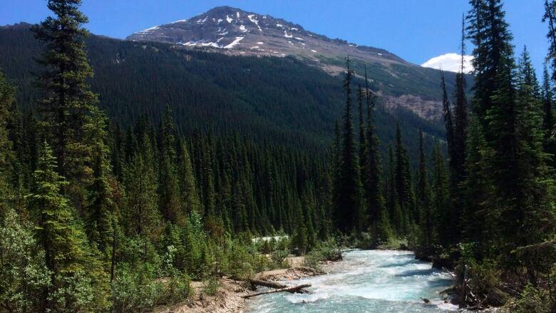 National Park Service Mandates Widespread Closures Of Facilities
