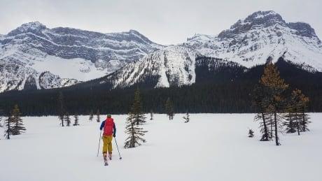 Backcountry skiing Banff