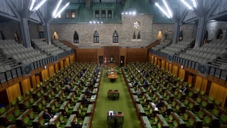 COVID Parliament 20200324