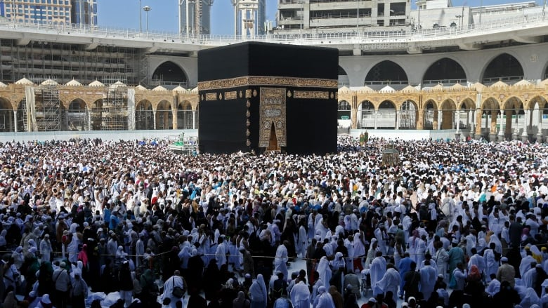 Muslims should delay making hajj plans - Saudi minister