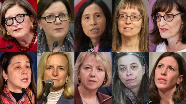 canada health experts composite
