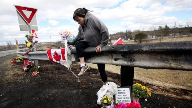 Work has started on inquiry into N.S. mass shooting, public safety minister says