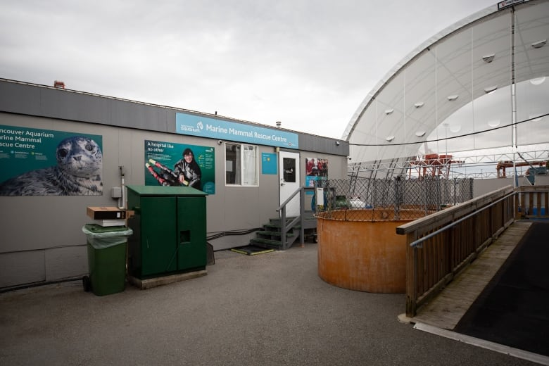 Vancouver Aquarium gets $600K in donations — enough for 2 ...