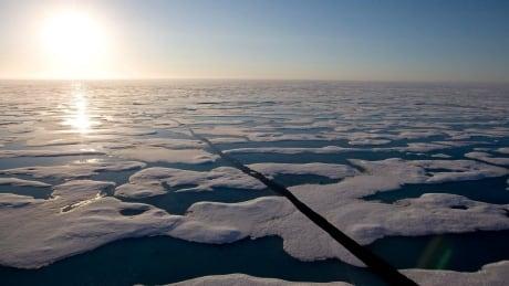 Arctic Ocean Changes 20200426
