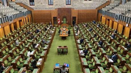 House of Commons April 29, 2020