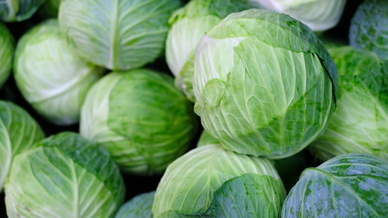 Coleslaw anyone? P.E.I. farmer left with mountain of cabbage due ...