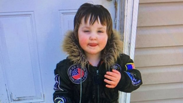 Parents of missing N.S. toddler take fight against cyberbullying to court