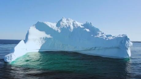 Bonavista Iceberg 2020