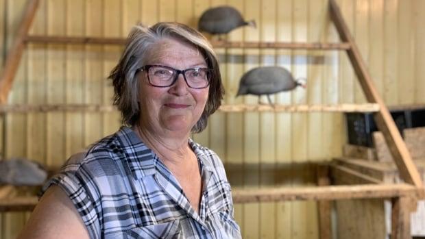 Got ticks? One Sask. woman says try guinea fowl | CBC News