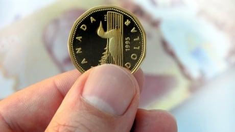 canadian dollar loonie 20 dollar bill background