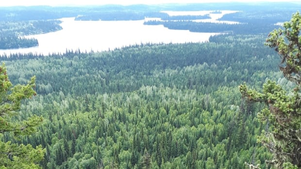 Northern B.C. lake being considered as site for plastics plant, sparking alarm among residents, First Nation   CBC News
