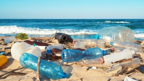 Plastic pollution on beach