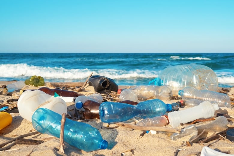 Plastic Flow into Ocean Predicted to Triple by 2040